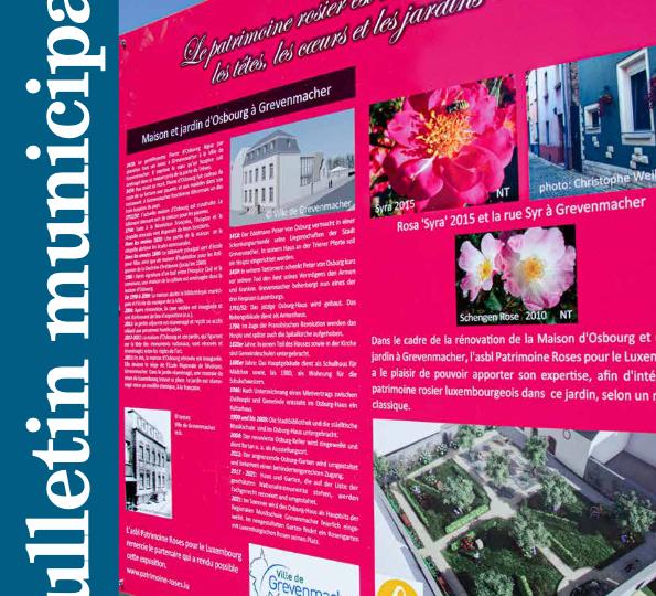 Bulletin_2020-03_web-thumbnail